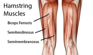 torna a vállízület fájdalma a csontritkulásban