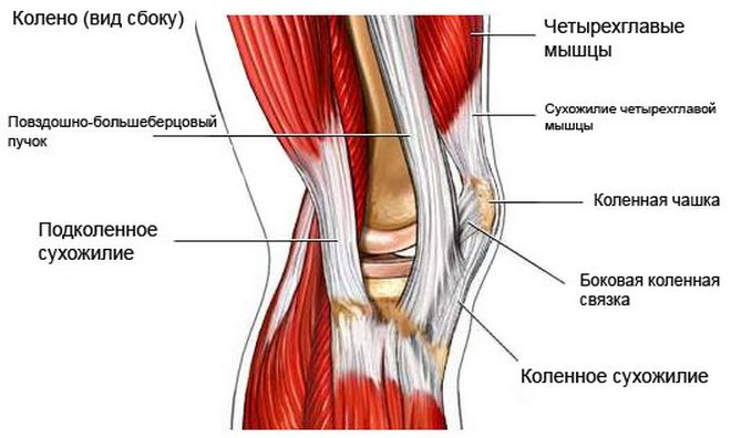 csípő- és térdízületek fájnak
