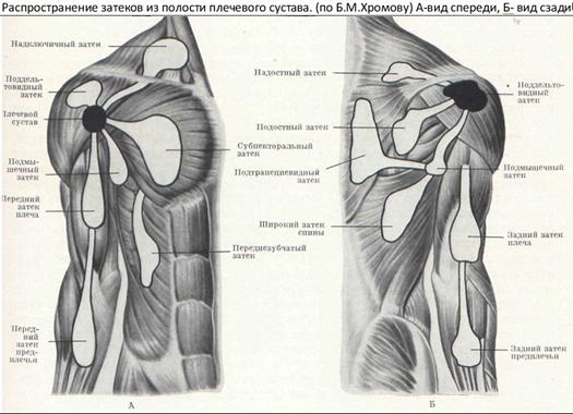 az alsó lábszár ízülete meghajolva fáj ízületi gyulladás jak gyógyítás