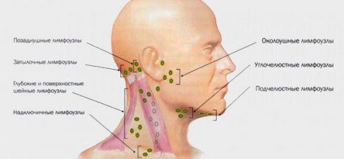 milyen kenőcsöket kell venni a nyaki osteochondrozissal