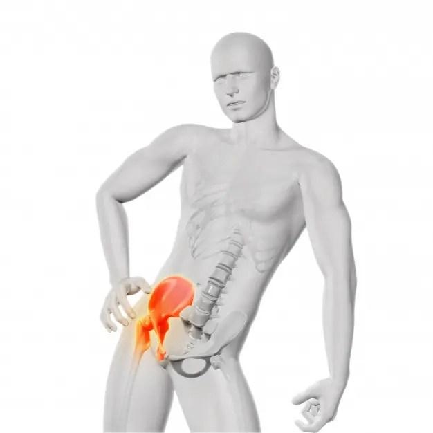 csípő ligamentumok