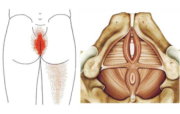 Milyen pvnp-t írnak elő az artrózisban