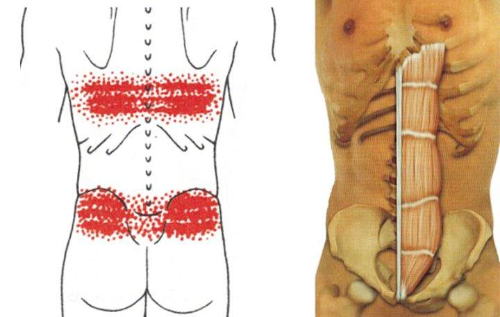 gyakorlatok sorozata az artrózis kezelésében)