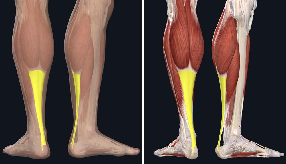 súlyos fájdalom a bokaízületben stroke után fájdalom a bokaízület deformáló artrózisával