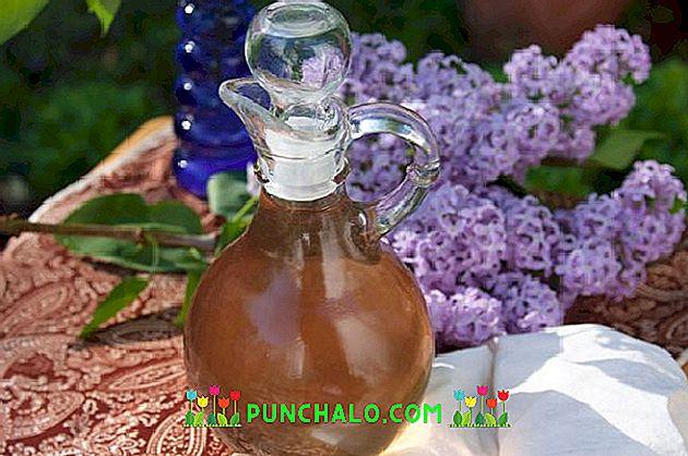 gyógynövények gyűjtése artrózis kezelésére)