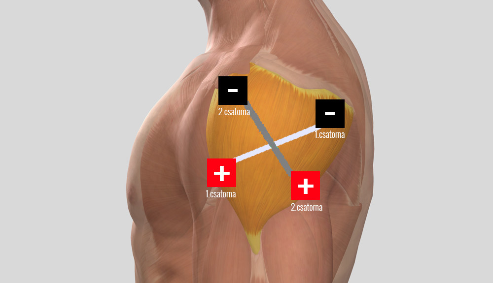 ízületi kezelés periarthritis)