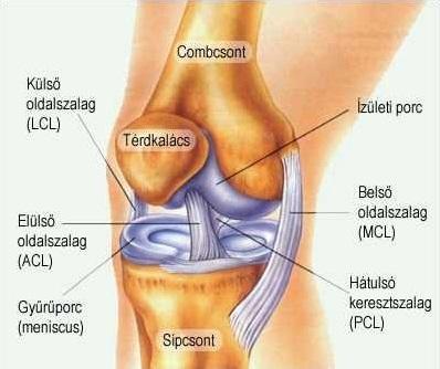 a láb és a térd ízületei összeroppantnak