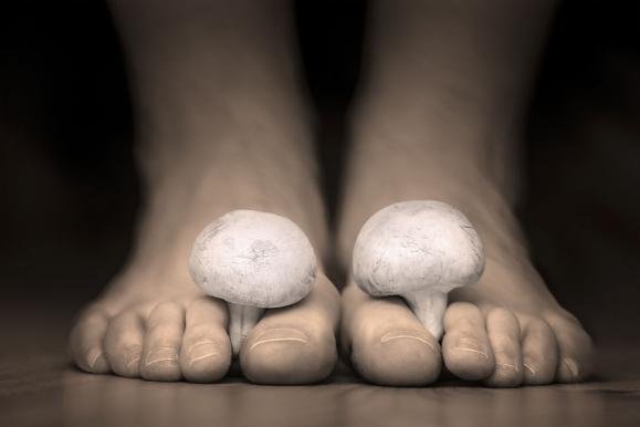 gomba gombás ízületi kezelés
