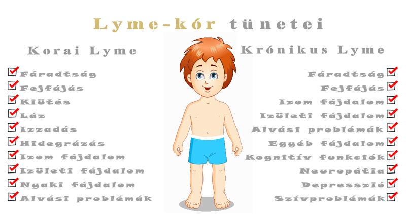 lyme-kór ízületi fájdalom)