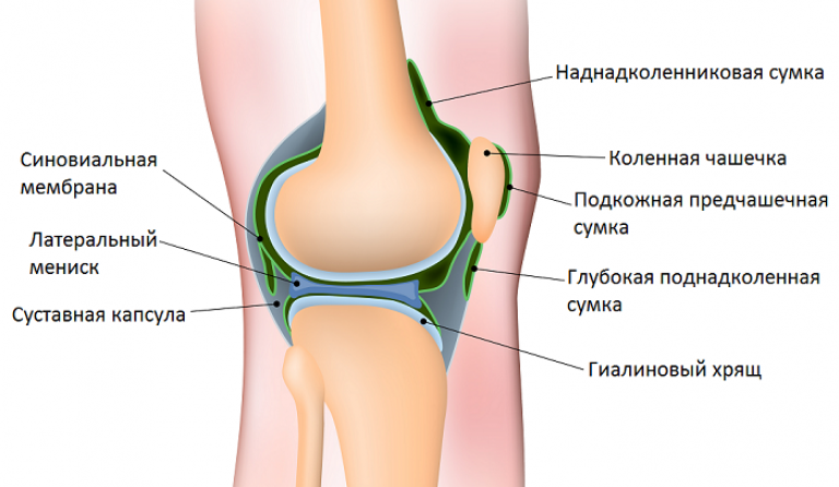 a bal térdízület artrózisa 3 fok