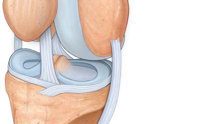 kézikönyv a térdízületek kezeléséről ízületi fájdalom kenőcs orvosi kezelés