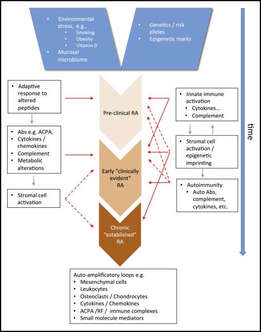 rheumatoid arthritis pathogenesis ppt