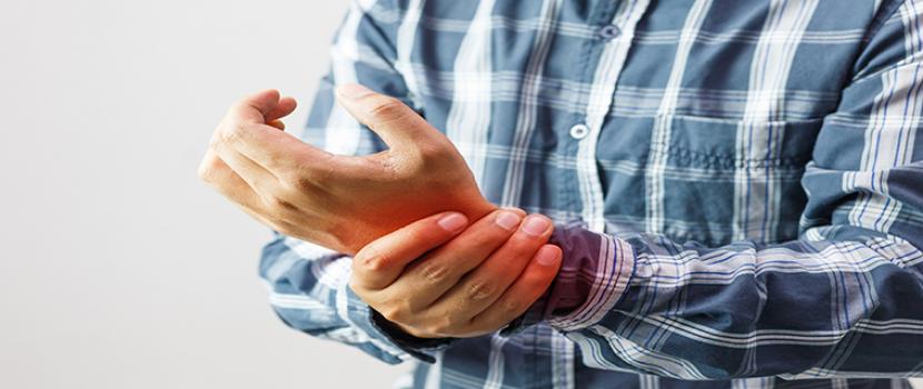 hol lehet vásárolni ízeltlábúakat fájdalom a vállízület ízületeiben