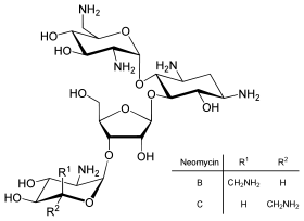 glükozamin-kondroitin tulajdonságok)