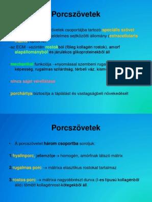 kötőszövet porc sejtcsoportok)