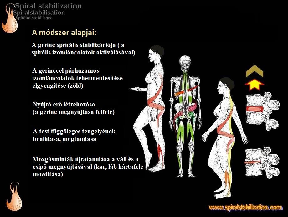 gerinc-térdkezelési módszerek