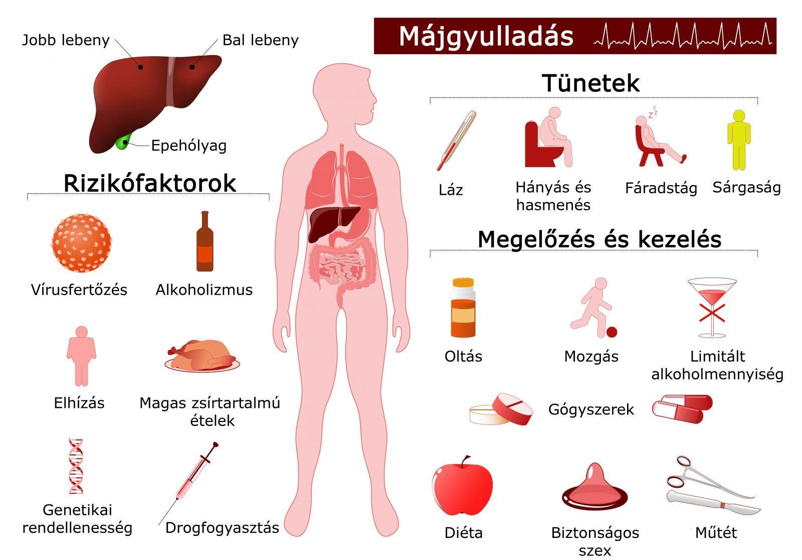 izom- és ízületi fájdalom, hepatitisz