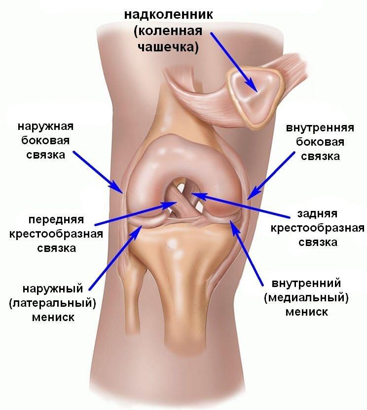 a térd meniszkuszának 2 fokos trauma)