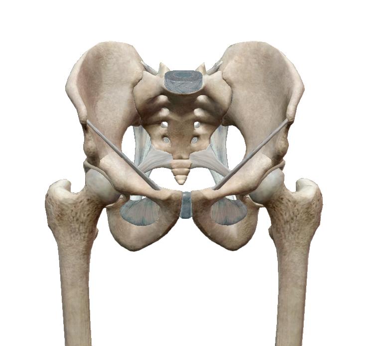 A boka, a térd, a csípő és, a hát terheinek csökkentése   Medicovi