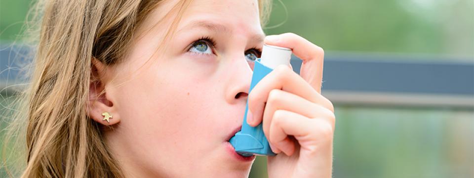 Az asztma mellett allergia is kialakult? - Allergiaközpont