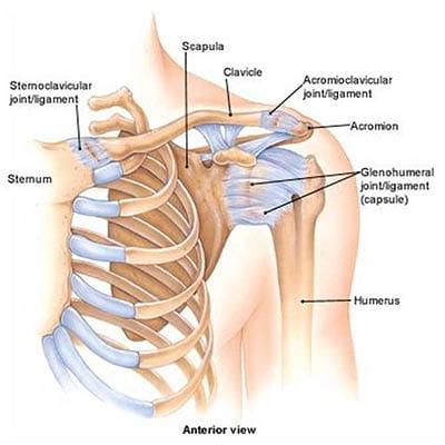 mi a vállízület osteochondrosis