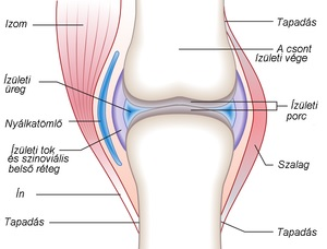 Ez a legolcsóbb és leghatásosabb módja az ízületi fájdalmak kezelésének