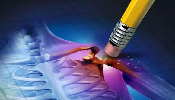 ayurvédikus készítmények ízületekre csípőízületek artrózisának kezelésére szolgáló készülékek