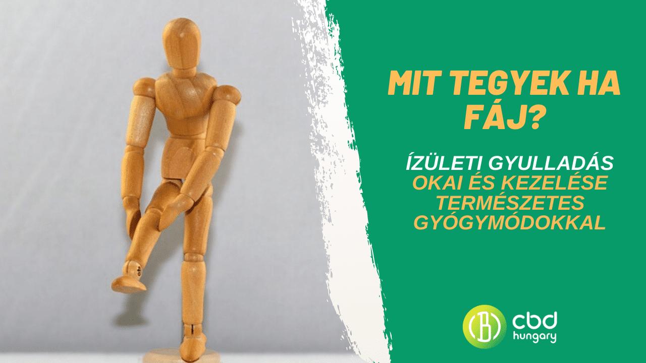 máj gogulan artrosis kezelése)