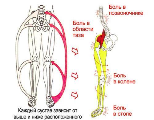fájdalom a lábak ízületeiben meghosszabbítás hajlításakor