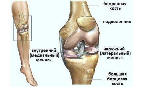 a térd medialis meniszkuszának törése)