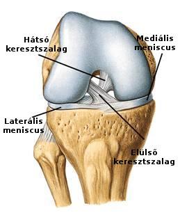 a térd keresztező ligamentuma károsodásának kezelése