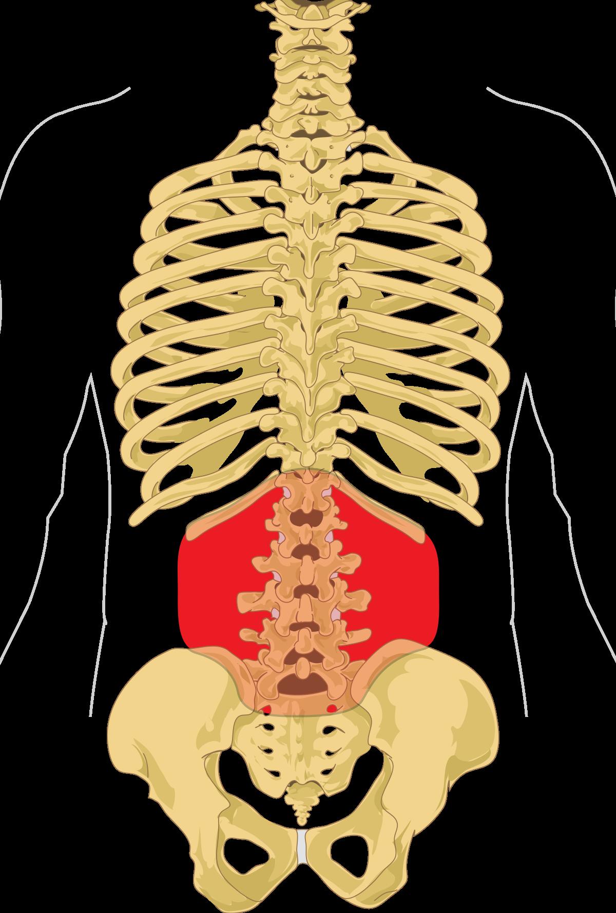 Tünet: lágyéki fájdalom