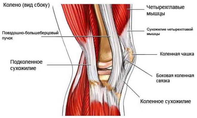 térdízületi kezelés első fokú csontritkulása