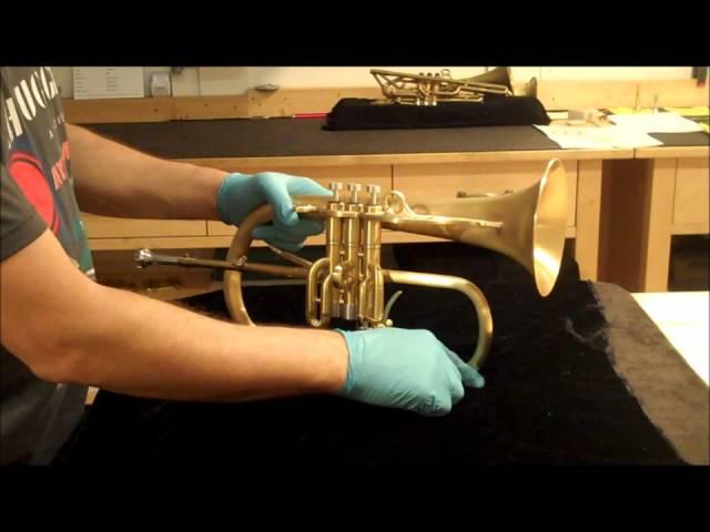trombita osteoarthritis kezelése)